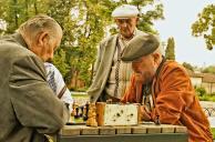 Bernardinu_sodas_chess_sachmatai_310