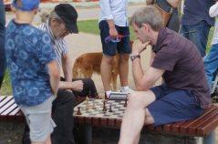 žaibo šachmatų varžybos DRUSKININKŲ vasaros taurė 2017; Leonas Pivoriūnas